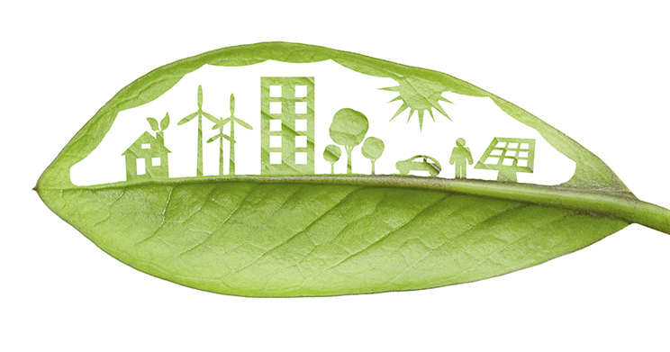 Livro sobre licitações sustentáveis destaca influência do Estado na preservação ambiental